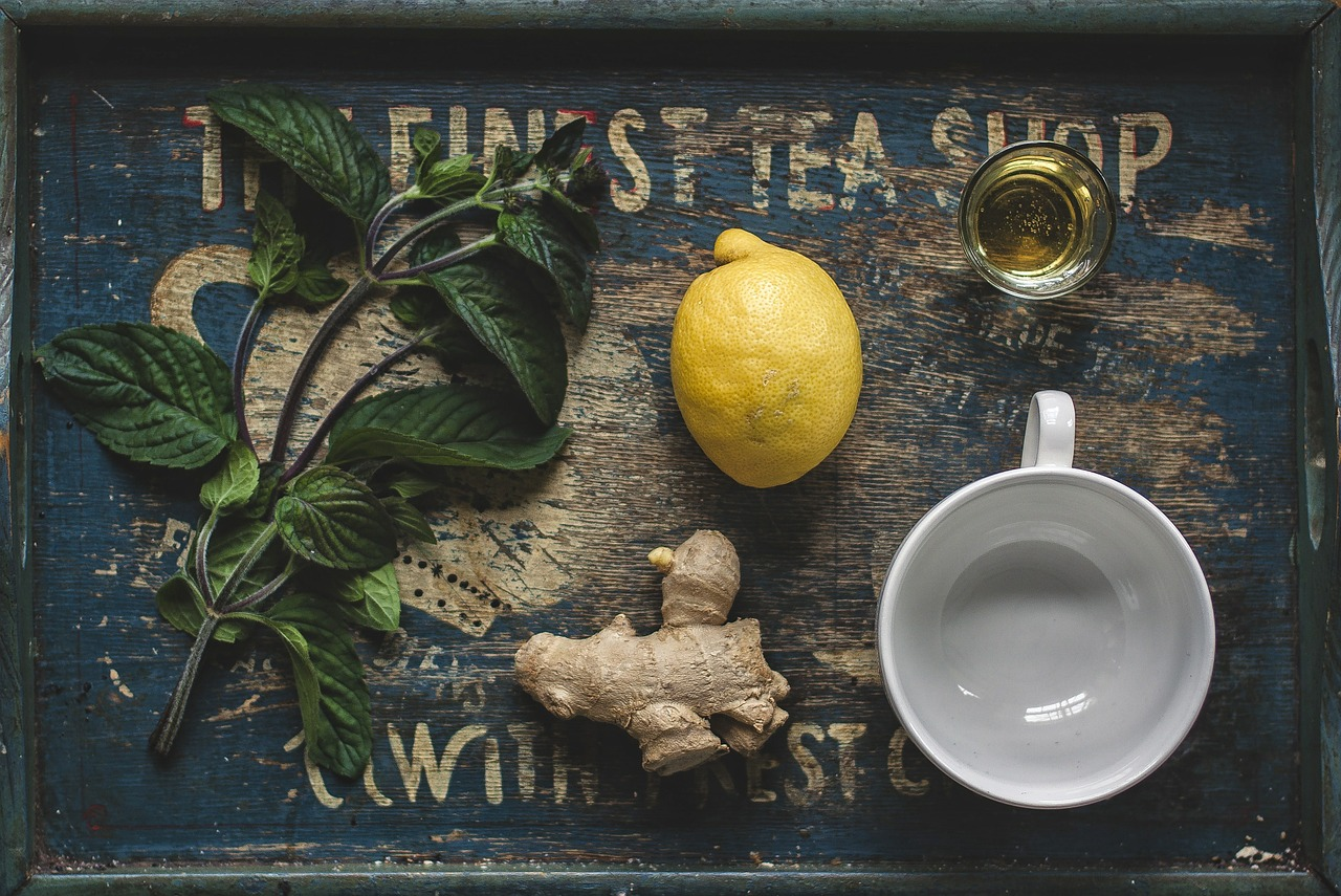 Fytofarmaka aneb bylinná léčba
